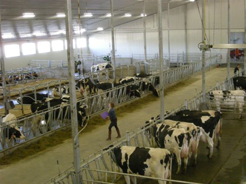 University of Saskatchewan- Dairy Research Centre