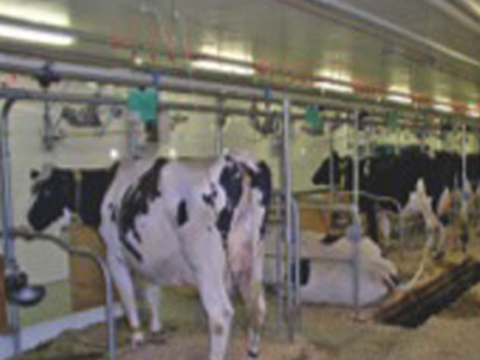 AAFC Lennoxville Dairy Research Centre